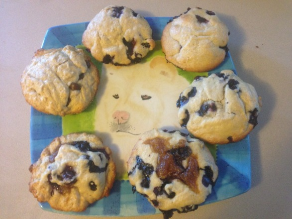 muffins horizontal